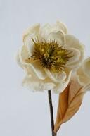Floare exotica uscata - Culoare deschisa