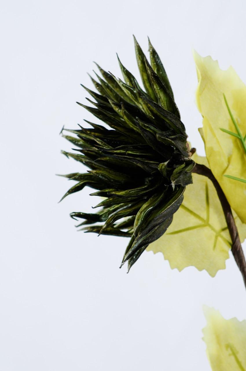Floare exotica uscata - Culoare verde