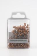 Ace Oasis cu perle culoare aurie 144 bucati in cutie