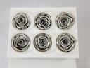 Cutie 6 capete trandafiri criogenati Silver