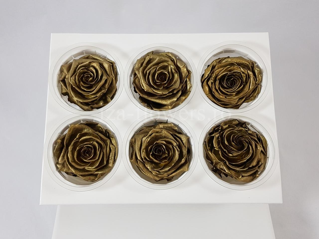 Cutie 6 capete trandafiri criogenati Gold