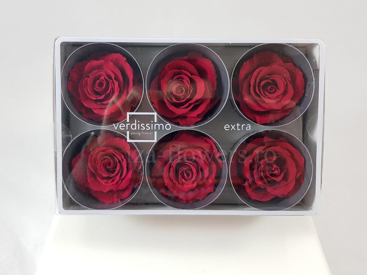 Cutie 6 capete trandafiri criogenati burgundy Extra