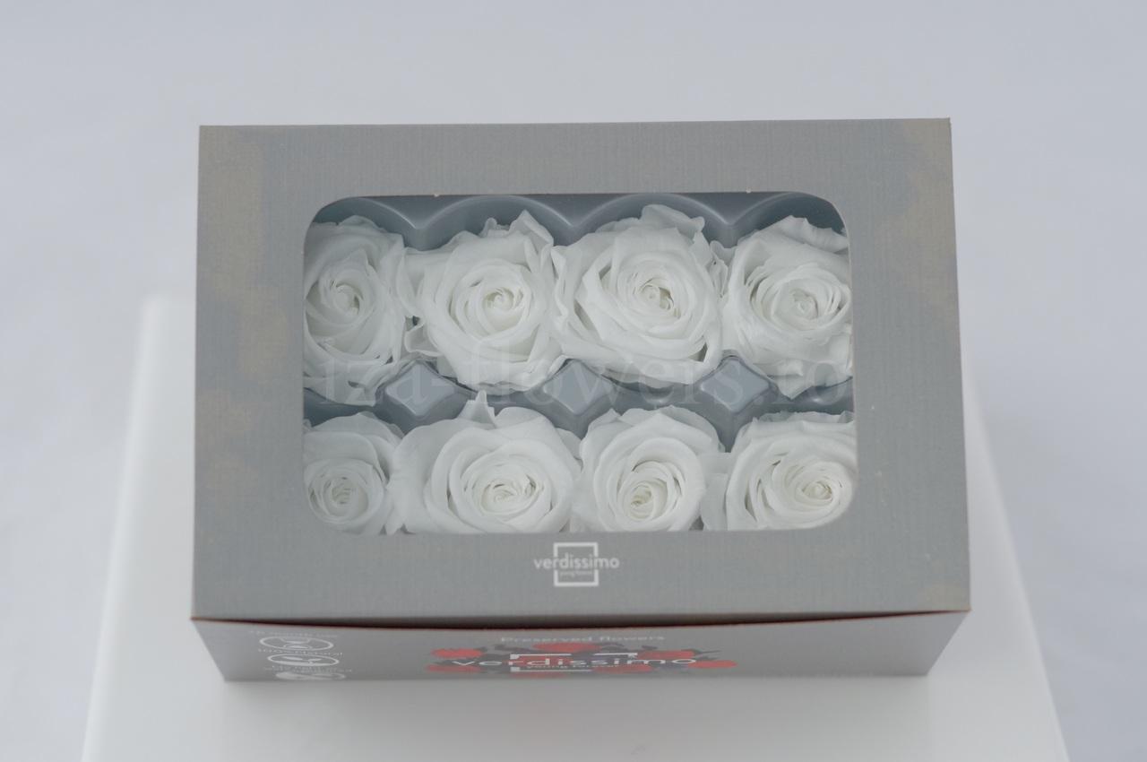 Cutie 8 capete trandafiri criogenati albi